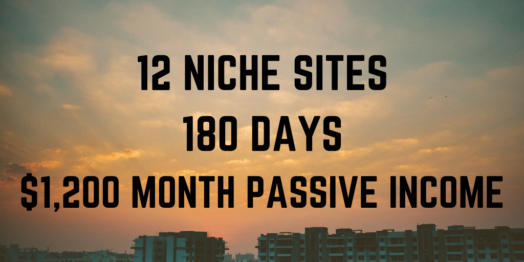 12 niche sites project